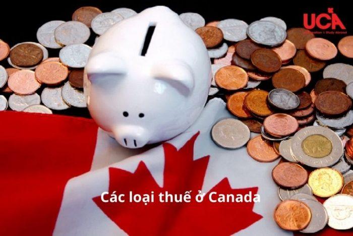 Các loại thuế ở Canada