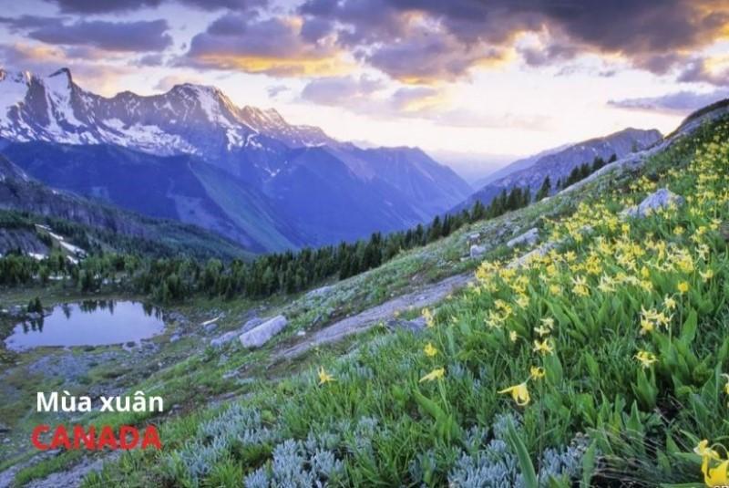 Khí hậu Canada vào mùa xuân