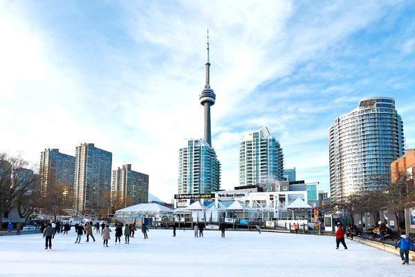 Một góc thành phố Toronto đầy năng động
