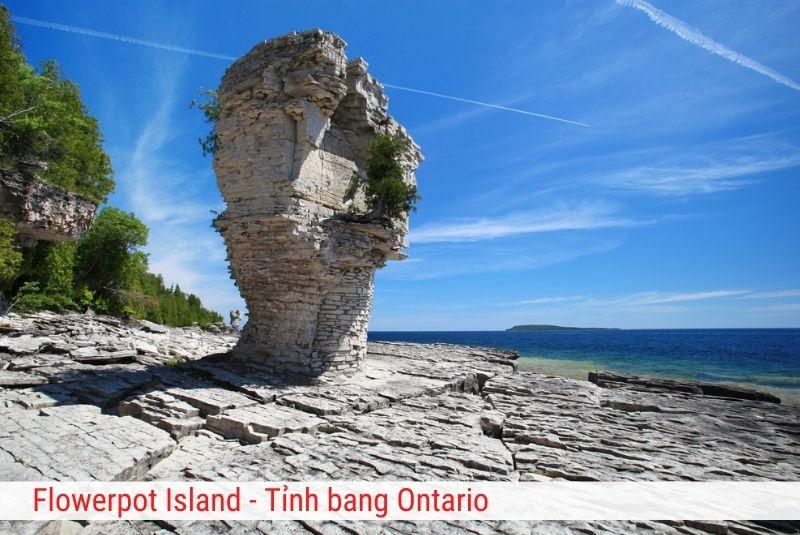 Flower Island Ontario