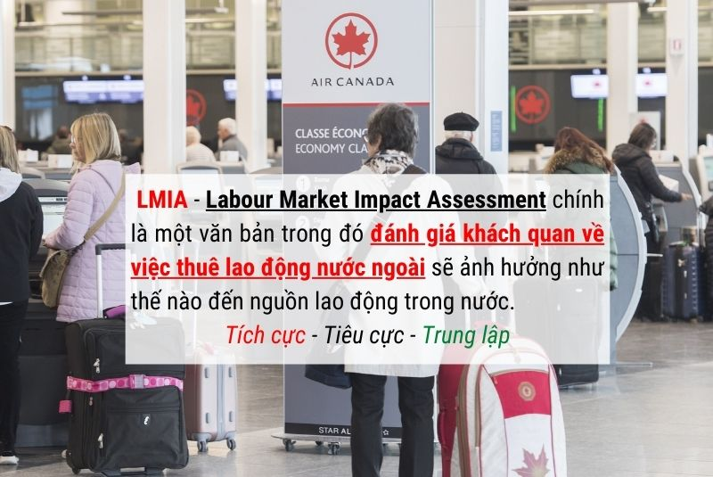 Labour Market Impact Assessment đánh giá khách quan thị trường lao động Canada