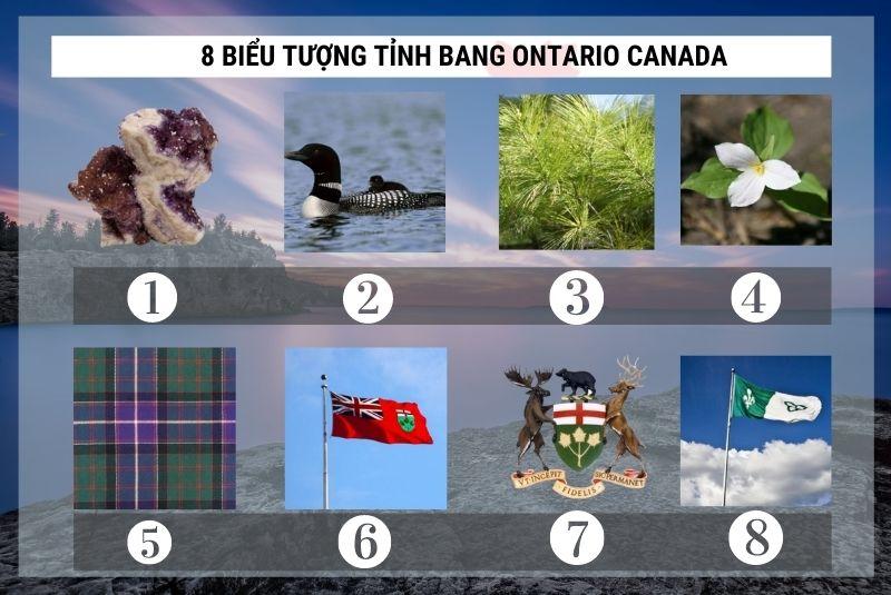 8 biểu tượng tỉnh bang Ontario