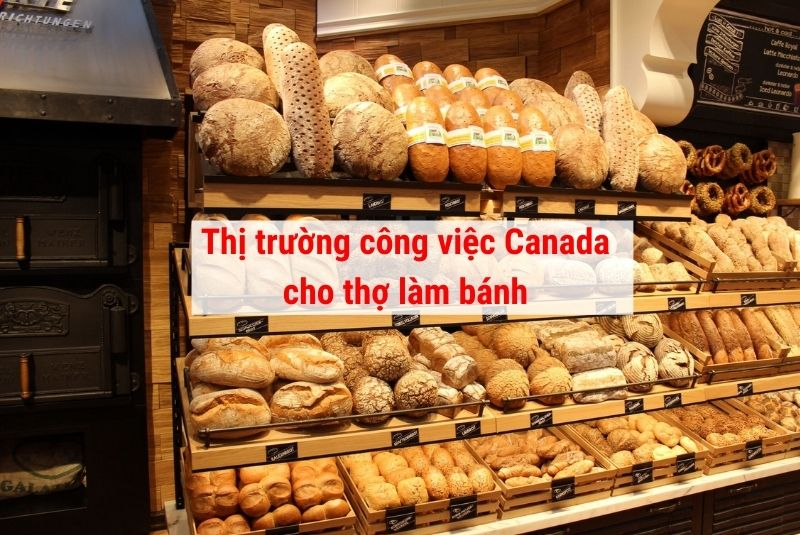 Thị trường công việc Canada cho thợ làm bánh