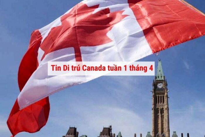 Tin di trú Canada tổng hợp tuần 1 tháng 4