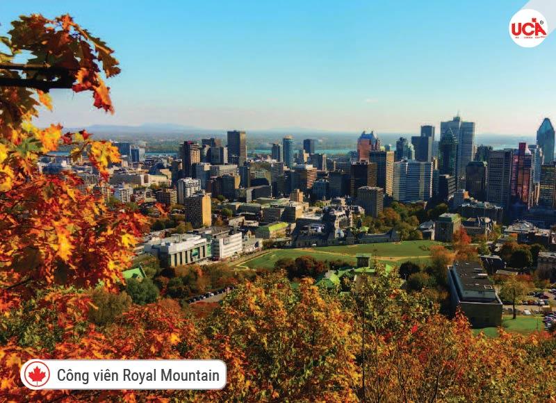 Công viên Royal Mountain được đặt tên theo một đỉnh núi khổng lồ duy nhất,