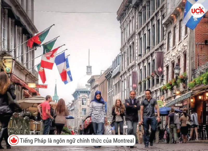 Tại Montreal dân số nói tiếng Pháp là chủ yếu