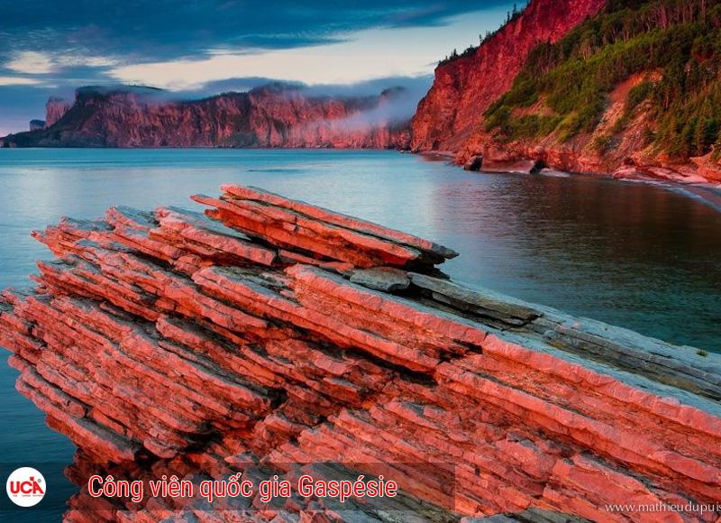 công viên quốc gia Gaspésie tỉnh bang Quebec