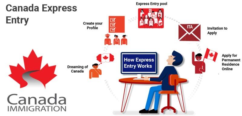 cách thức hệ thống express Entry Canada hoạt động